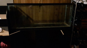 Large aquarium and stand with storage (pick up only)