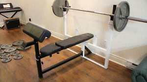 Banc d'exercise / Weights Bench Bar, Northern Ligths set