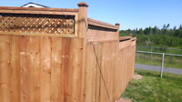 Custom Decks and Fencing