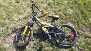 CCM boys bike
