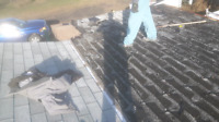 Roofs 780-504-3318