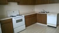 Two bedroom townhouse for rent at 14920-56 Avenue Terwillegar