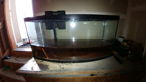 200 obo 72G bowfront aquarium fish tank with Emperor 400 filter