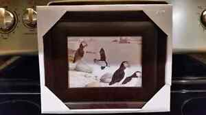 Newfoundland Framed Pictures