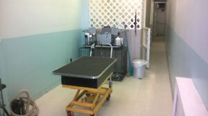 Do it yourself dog wash kijiji in ontario buy sell save with dog grooming business for sale solutioingenieria Gallery