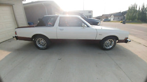 1981 dodge diplomat, low km, 360v8, good condition.