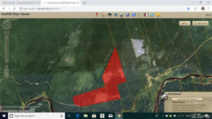 70.23 Hectares of land in Halcomb, NB  MLS® # NB015471