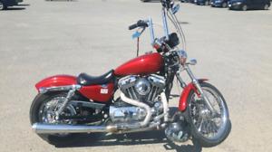 2006 Sportster 1200cc