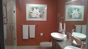 PLUMBER /RENOVATOR AVAILABLE!!! 20+ YEARS EXP!!!! London Ontario image 8