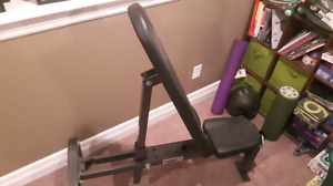 Northern Lights Flat/Incline Bench - Gym Quality