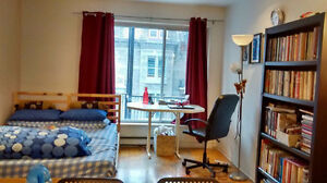 Spacious Studio Close to McGill for  May 1 till August
