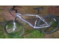 Silver vertigo mountain bike