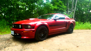 2007 ford mustang Gtcs low kms