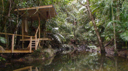 50 Acres of Rainforest - your own ECO System Maleny Caloundra Area Preview
