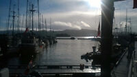 Looking for a Harbourmaster on Haida Gwaii!