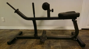Seated Calf Raise Machine. $90 obo.