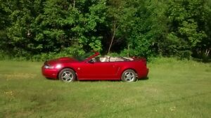 2004 Ford Mustang decapotable Cabriolet