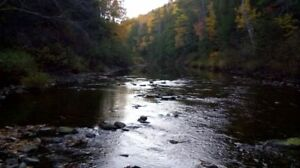 100 Acres 1000 feet river frontage .