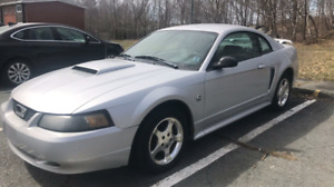 04' Mustang 40th anniversary for sale