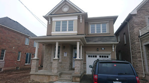 FOUR 4 BEDROOM 4 WASHROOM HOUSE FOR RENT IN MILTON (1 Yr Lease).