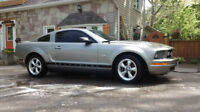 2009 Ford Mustang Sports Coupe Deluxe (2 door)