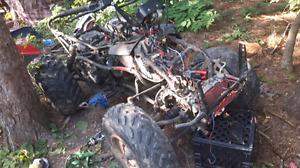 Suzuki kingquad quadrunner 300 250 parts