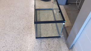 Reptile tanks and accessories