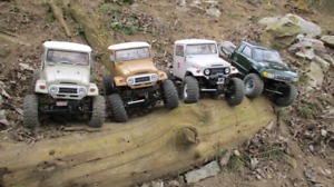 Looking for a 1:10 rock crawler.
