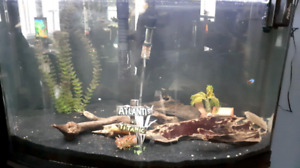 32 gallon fish tank and stand.