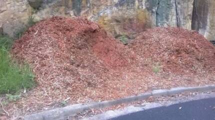 FREE FREE FREE LOTS of Mulch Bark. Glenhaven The Hills District Preview