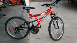 Vice 24 super cycle