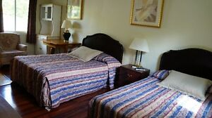 PET FRIENDLY WINTER ACCOMMODATIONS IN MADOC