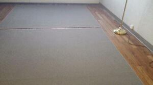 Two Area Rugs (230 cm * 184 cm)