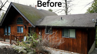 Exterior Cleaning Service