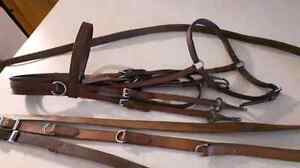 COB OR SMALL HORSE BRIDLE