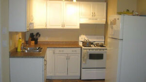 UTILITIES INCLUDED!!!  FULLY RENOVATED 2 BDRM BASEMENT SUITE