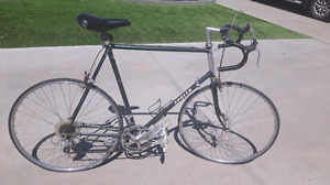Vintage apollo 10 speed bike triathlon