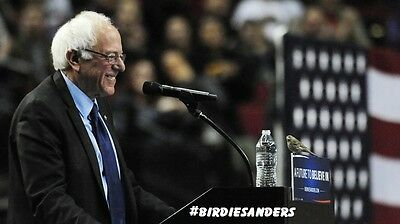 "BERNIE SANDERS WITH BIRD PIC FRIDGE MAGNET 5"" X 3.5"" #BIRDIESANDERS"
