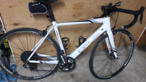 For sale Opus Allegra 1.0 di2