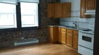 LG 3 BR/GRAND 5½ RÉNOVÉ CENTRE-VILLE/DOWNTOWN-CONCORDIA/MCGILL