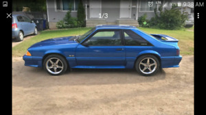 Looking for foxbody mustang gt / cobra