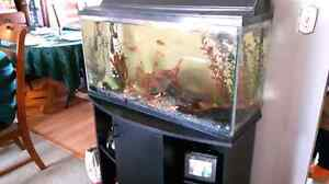 35 gal fish tank for sale
