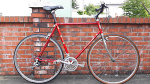 Large Size ,18 Speed Road Bike