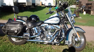 Immaculate senior driven and maintained Harley Softail