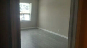 Townhouse/Condo Large 2 Bedroom JUST FULLY RENOVATED ALL NEW Cambridge Kitchener Area image 4