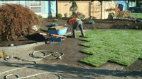 Landscaping, loam, sod, gravel delivery free estimates city wide