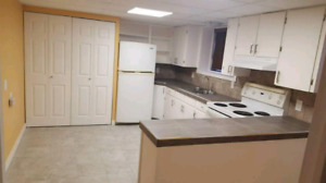 Beautiful and Bright 2 bedroom Basement Suite