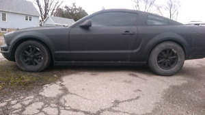 2005 Mustang trade or sell