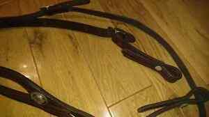 One Eared Leather Headstall Belleville Belleville Area image 9