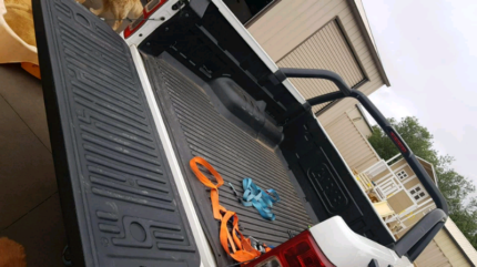 ARB TUB LINER for a extra cab Ford PX Ranger Lara Outer Geelong Preview